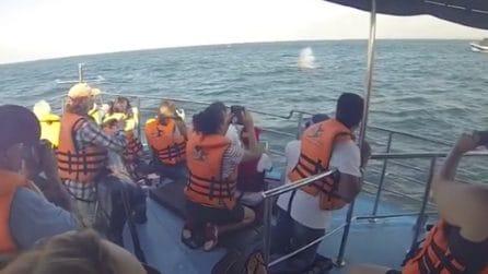 Si intravede qualcosa nell'acqua e all'improvviso il getto: le balene nuotano vicino la barca