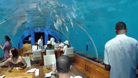 Il ristorante subacqueo in cui si può mangiare negli abissi oceanici alle Maldive