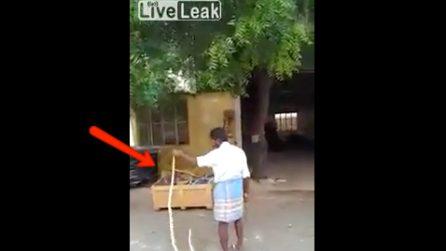 Nota un grosso serpente e decide di catturarlo: la scena prende una piega bizzarra