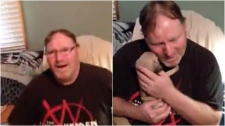 Inconsolabile dopo la morte del suo cane: la moglie lo sorprende con un dolcissimo regalo