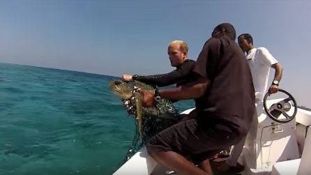 È stata ritrovata con una rete intorno al corpo: la bellissima tartaruga ora è libera