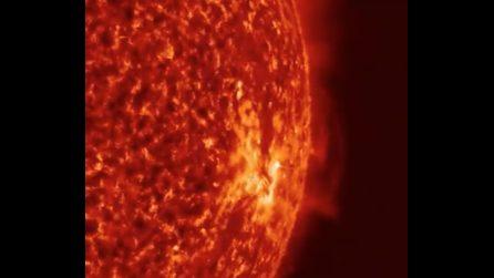 Il sole visto da vicino: i filamenti di plasma si muovono incessantemente