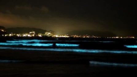 Le onde si colorano di un insolito azzurro fluo: lo spettacolo è fantastico