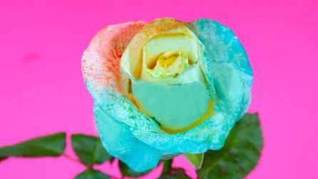 Come fare una rosa arcobaleno
