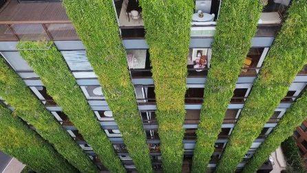 Santalaia: il giardino verticale più grande del mondo