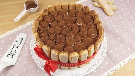 Charlotte tiramisu: o bolo perfeito para surpreender em uma festa!