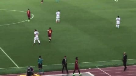 Totti entra in campo per l'ultima partita: lo stadio impazzisce