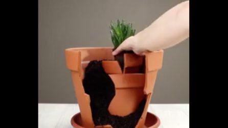 Come riutilizzare un vaso rotto: il risultato è pazzesco