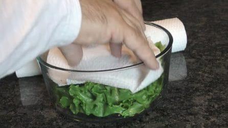 Come conservare l'insalata fresca per più tempo possibile