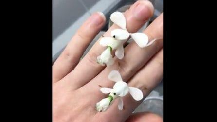 Sembrano i petali di un fiore ma l'apparenza inganna: resterete a bocca aperta