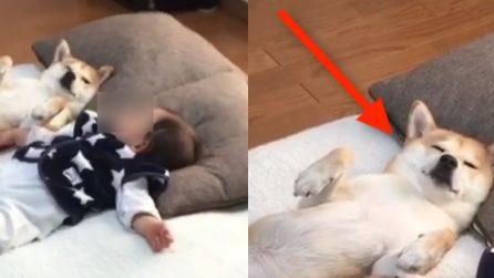 È l'ora del riposino: il cagnolino dorme beatamente nella stessa posizione del bimbo