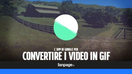 Motion Stills disponibile per Android: come funziona l'app per creare GIF dai video