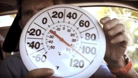 30 minuti chiuso in auto a quasi 50°: ecco cosa può provare il nostro cane abbandonato al sole