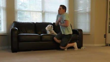 Finge un malore per vedere la reazione del suo cane: ciò che accade è sorprendente