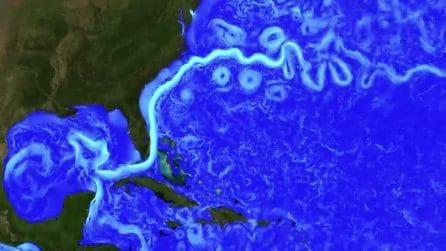 L'ipnotico video della NASA che mostra come si muovono le correnti oceaniche nell'Atlantico
