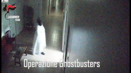 Pavia, fermato il ladro che rubava quadri di valore in residenze per anziani travestito da fantasma