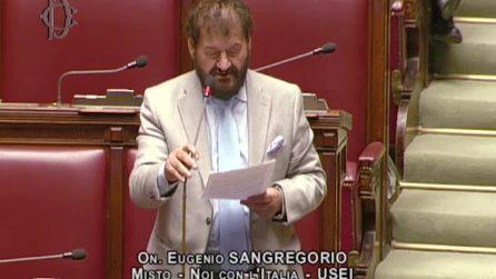 """Il deputato balbetta durante il suo primo intervento alla Camera: """"Sono un po' nervoso"""""""
