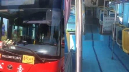 Sembra una piscina ma è un autobus: l'idea originale del conducente