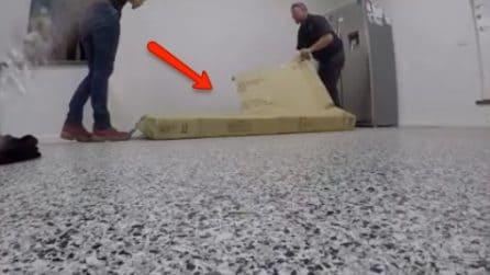 Durante il trasloco notano qualcosa muoversi in uno scatolone: la scoperta è terrificante
