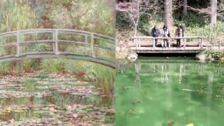 Giappone, lo stagno sembra uscito da un quadro di Monet: uno dei luoghi più belli al mondo