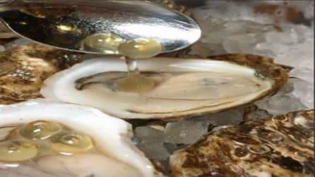 Mette il caviale nell'ostrica: piatto prelibato e chic