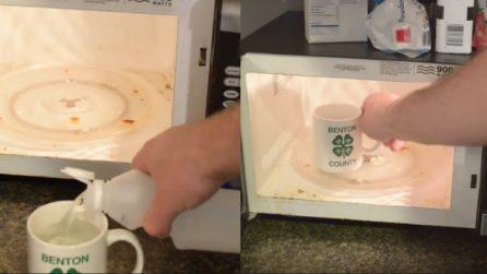 Mette l'aceto nel microonde: dopo pochi minuti ottiene un risultato fantastico