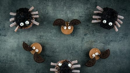 Haloween Fun: spider cupcakes and peanut butter cup bats