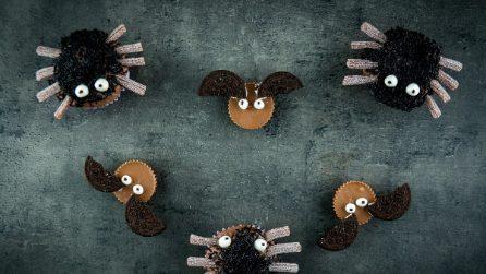 Ragno e pipistrello di Halloween: i bambini li adoreranno!