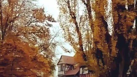 Autunno a Colmar: uno scenario che ti incanterà