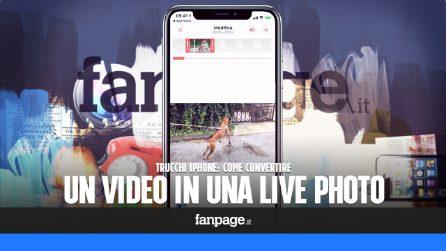 Con questo trucco puoi usare i video come sfondo animato per iPhone