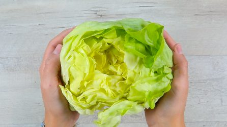 How to preserve lettuce