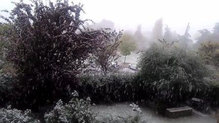 Bologna, la neve scende copiosa sulla città