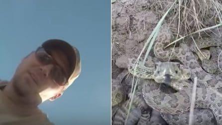 La telecamera gli cade dalle mani e finisce nel covo di serpenti: la scena da incubo