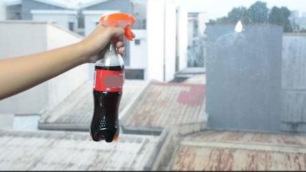 Usa una bibita gassata per pulire i vetri: il risultato è perfetto