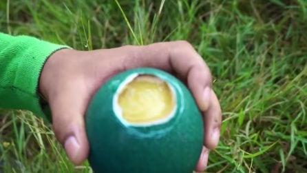 Prepara una ricetta con delle costosissime uova verdi