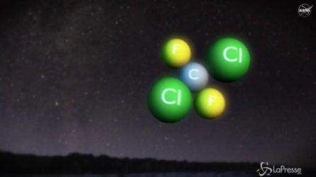 Nasa, così le molecole di cloro riducono il buco dell'ozono: la spiegazione del fenomeno