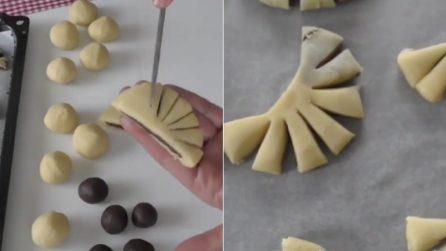 Ventagli e mezzelune cacao e vaniglia: la ricetta per dei biscotti bicolore deliziosi