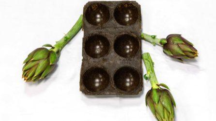 Dagli scarti di frutta e verdura può nascere la bioplastica