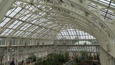 Londra, riapre la più grande serra al mondo con piante rarissime
