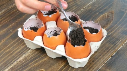 Mette il terreno nelle uova: il trucco utile per riciclare i gusci