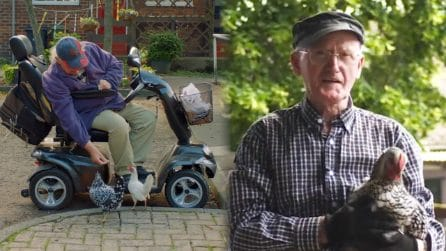 Galline da accudire per gli anziani rimasti soli: la nuova terapia per guarire la depressione