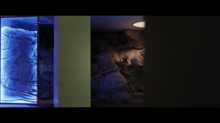 Loro 2: il trailer