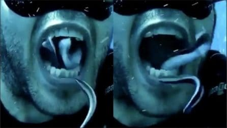 Una pulizia dei denti particolare: il dentista subacqueo