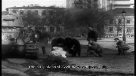Sea Sorrow - Il dolore del mare: il trailer italiano