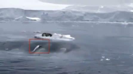 C'è un buco in acqua che si muove a grande velocità: assurdo quello che succede