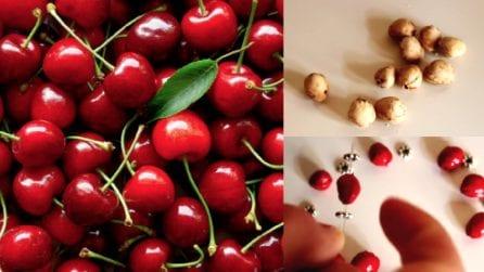 Come riciclare i noccioli delle ciliegie: l'idea che vi stupirà