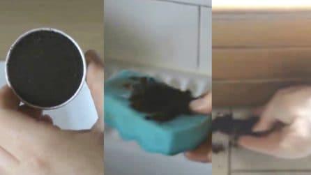 Conservate i fondi del caffè: ecco 7 metodi per riutilizzarli