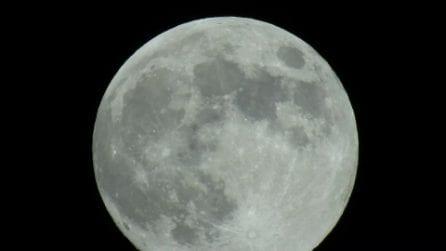 Saturno duetta nel cielo con la Luna Fragola: le immagini spettacolari della congiuzione astrale
