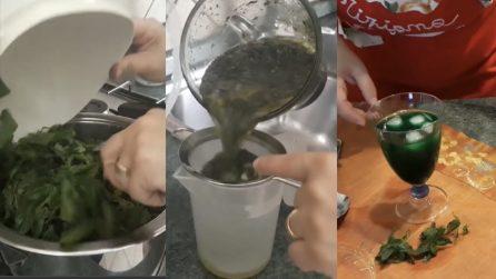 Sciroppo alla menta fatto in casa: una bibita fresca per combattere il caldo
