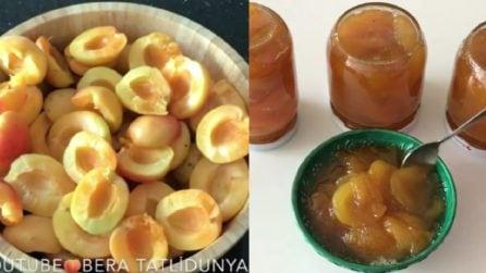 Le ricetta per una buonissima marmellata di albicocche